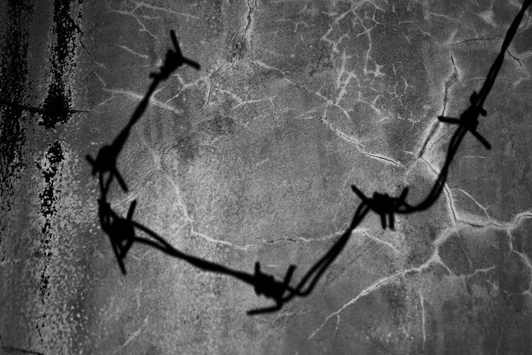 Close-up of barbed wire on wall