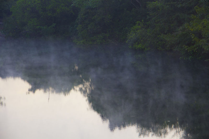 Fog in the water Beauty In Nature Day EyeEm EyeEm Best Shots Eyeem Market Fog In The Water Foggy Morning India Nature Nature Photograhy Nature Photography New Perspectives New Photographer No People Outdoors Reflection River View Riverside Scenics Tranquility Travel Tree Water Waterscape