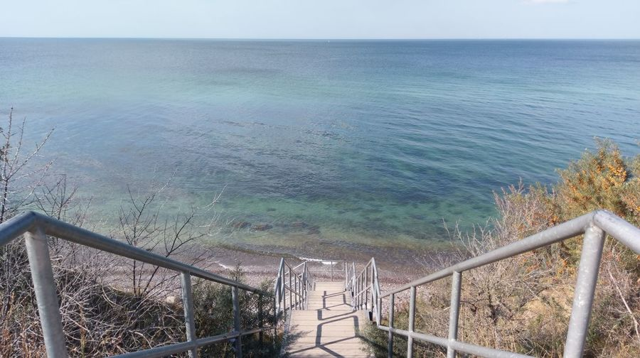 Water Sea Tree