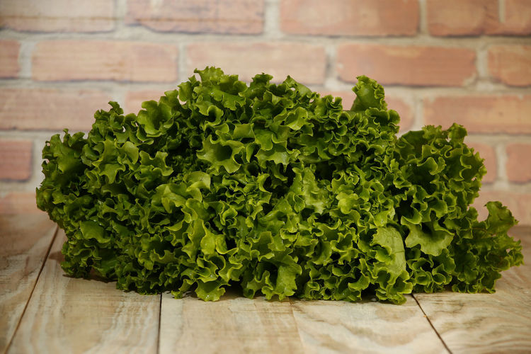 alface lettuce Still Life Alface Crespa Alface Table Raw Food Nature Focus On Foreground Herb Growth Wood - Material Leaf Plant Part Close-up Plant Vegetable Indoors  No People Freshness Healthy Eating Wellbeing Food And Drink Food Green Color Lettuce