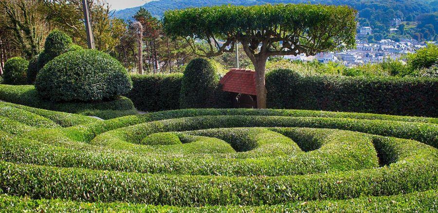Les Jardins d'étretat (Garden's Etretat, France) Land Arts Monet Monet Garden Day Growth Land Art Landscape Architecture Landscape Art Maze Nature No People Outdoors Plant Topiary Topiary Art Topiarygarden Tree étretat