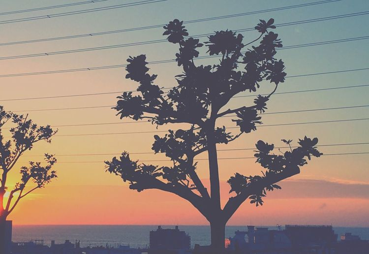Sunset Japan Okinawa
