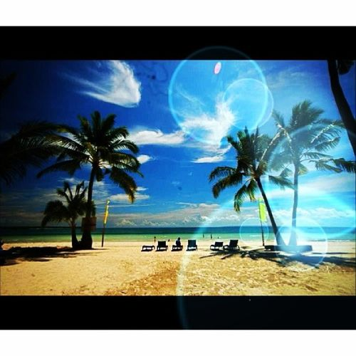 I wan to make memories all over Philippines ??? Traveltime Beaches InstaBeachParty Neverendingsummer trees sunlight rays ⛵⛵⛵