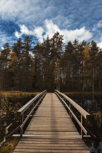 EyeEm Nature Lover Bridge Built Structure Cloud - Sky Connection Day Diminishing Perspective Direction Footbridge Forest Land Long Nature No People Outdoors Plant Railing Sky The Way Forward Tranquility Tree Wood Wood - Material Wood Paneling