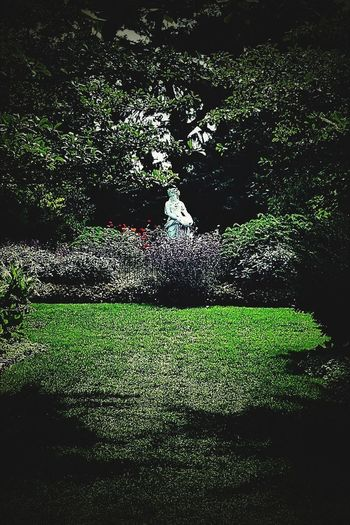 Statue Grass Green Color Outdoors No People Day Nature Garden Garden Photography Garden Architecture Garden Path Garden Art Toledozoo Toledo, Ohio