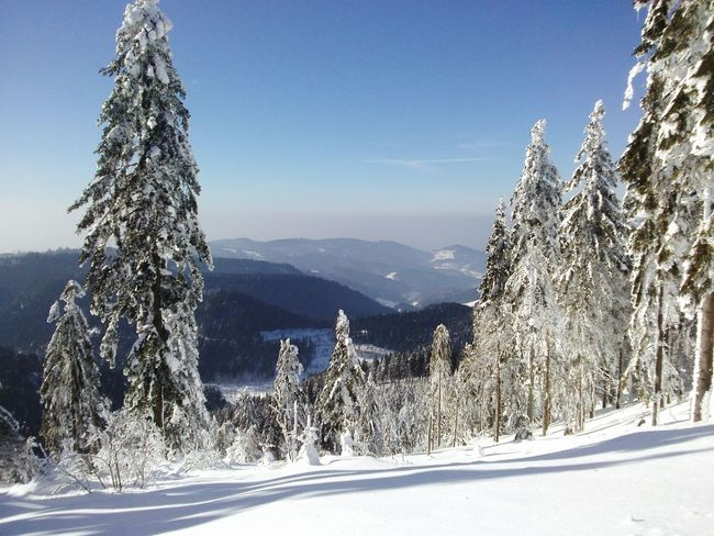 It's Cold Outside Clouds And Sky Snow Snow ❄ Schwarzwald Winter Trees Germany Berge Schnee Mountains And Sky