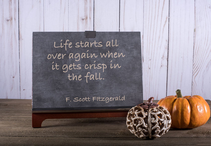 Chalkboard with F. Scott Fitzgerald quote about fall Autumn Fitzgerald Life Text Thankgsiving Chalk Chalkboard Crisp Day Fall Food Freshness Halloween Indoors  No People Pumpkin Vegetable