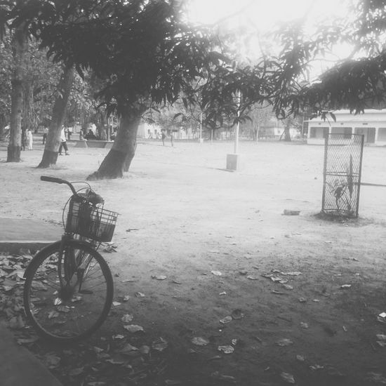 Childhood Memories Shantiniketan Campus Life College Days Cyclephotography Black & White Village Life Street Photography EyeEm Best Shots