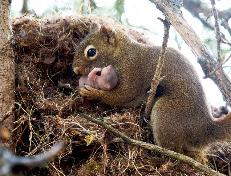 motherhood ♥