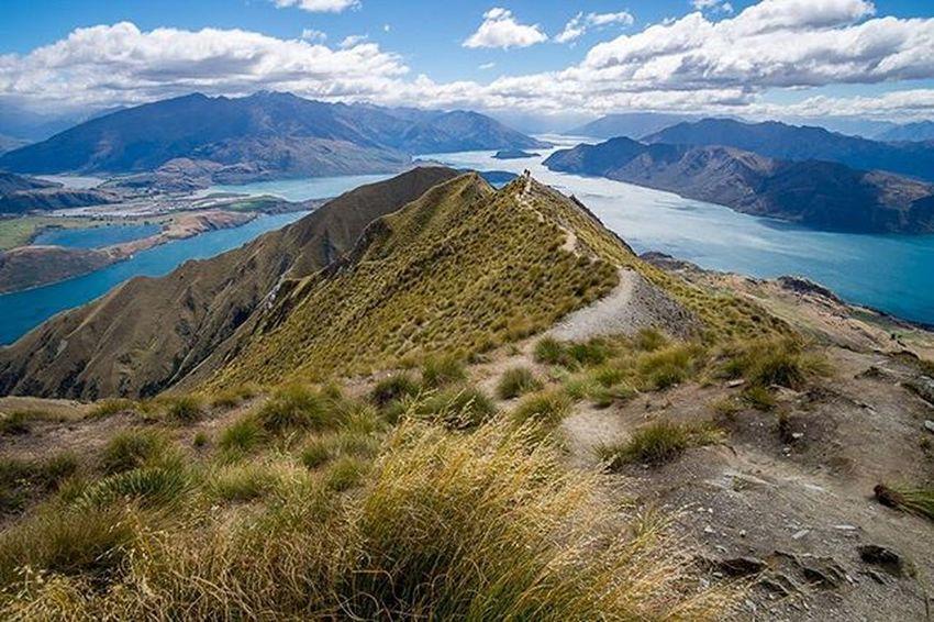 Whoever rated Roy's peak as an easy hike is a liar... Soo worth it though. Royspeak Hikes Getoutandshoot Fujifimxt1 Kiwi_photos Ig_newzealand Capturenz Kiwipics Bestnewzealand The Great Outdoors - 2016 EyeEm Awards