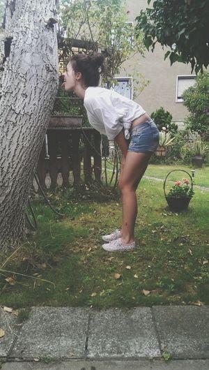 Baum oder was Hello World