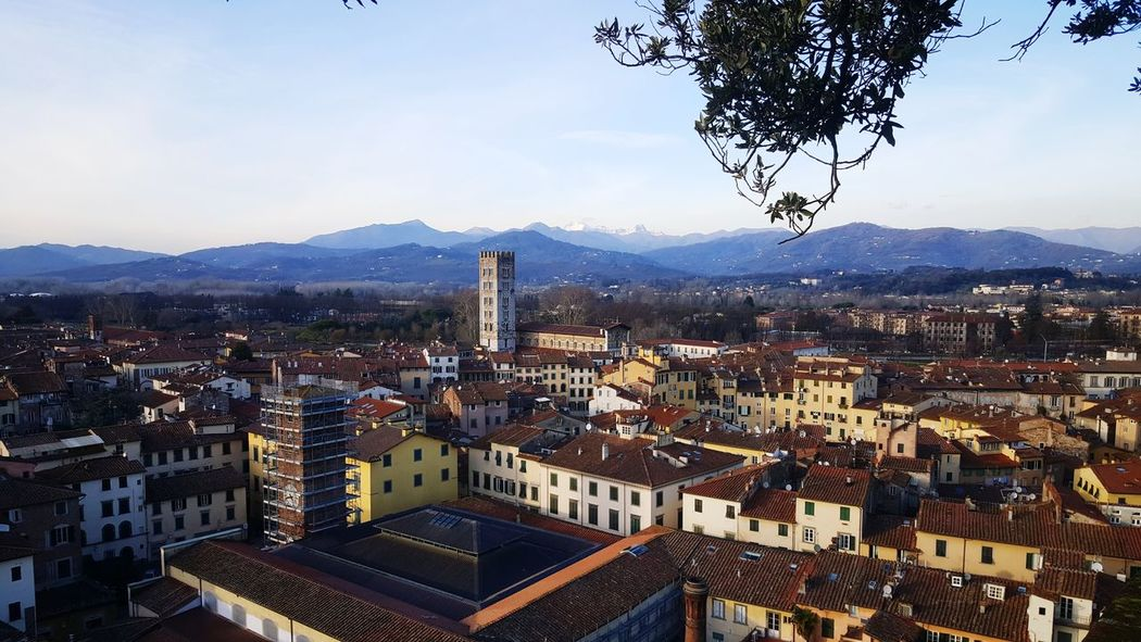 from the top! Medieval Architecture Tuscany Italy MedievalTown Torre Guinigi Tuscany Lucca Italy Lucca Medieval City Mountain Cityscape High Angle View City Mountain Range Architecture Residential Building Travel Destinations Aerial View Scenics Sky Outdoors Building Exterior