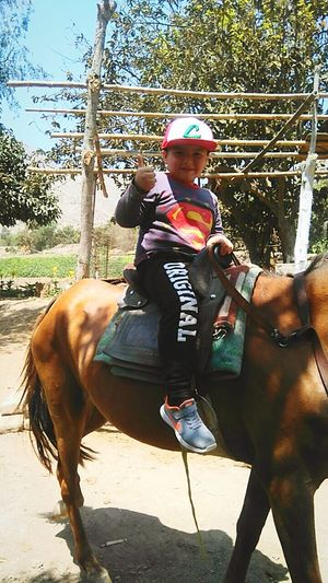 Vacations in peru , summer Horse One Animal Domestic Animals Animal Themes Riding Animal Jockey Mammal Horseback Riding One Person Livestock Sports Race People Childhood Child Full Length Sport Adult Competition Day First Eyeem Photo Summer Vacation Time Vacations Perú ❤