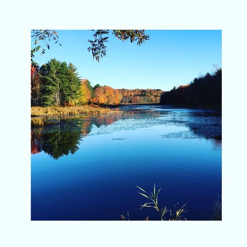 Beauty In Nature Blue Calm Day Growth Idyllic Lake Lakeshore Landscape Majestic Nature No People Non Urban Scene Non-urban Scene Outdoors Reflection Remote Scenics Sky Standing Water Tranquil Scene Tranquility Tree Water