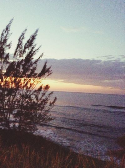 Sunset Nature Lover Nature Beachlovers Gateaway