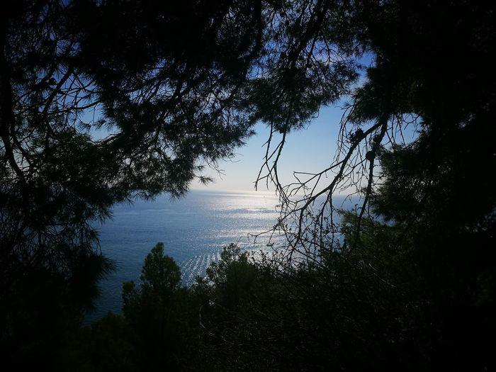 mare italiano