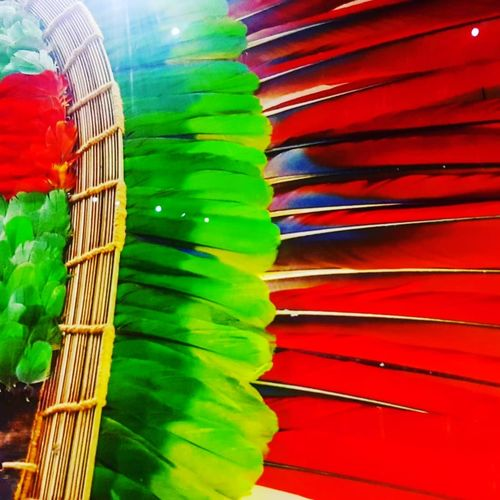 Mask Maya Colorful Feather  Featured Photo Feather_perfection Feathers Of A Bird Featherart