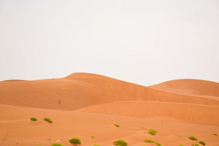 Desert Sand Dune Landscape Sand Climate Land Sky