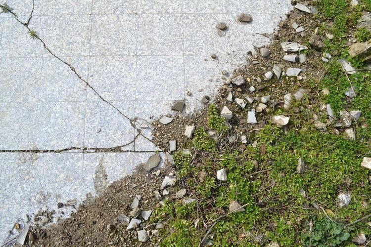 Damaged Degradation Green Green Green!  Ground Nature Nature Resistence Springtime Urban Urban VS Natural The Week On EyeEm