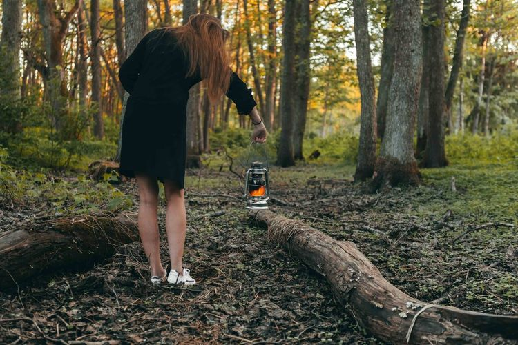 Girl with oil lamp is looking for something at the forest. Evening, Sunset Adult Day Digital Camera Forest Full Length Hairstyle Land Leisure Activity Lifestyles Nature One Person Outdoors Photographer Plant Real People Rear View Standing Tree Tree Trunk Trunk Walking Women WoodLand