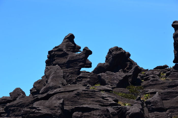 Gorilla appeared after thousands of years, Mt. Roraima, Canaima National Park, Venezuela Beauty In Nature Blue Clear Sky Copy Space Day Erosion Geology Gorilla Low Angle View Mountain Nature No People Outdoors Physical Geography Rock - Object Rock Formation Scenics Sky Tranquil Scene Tranquility
