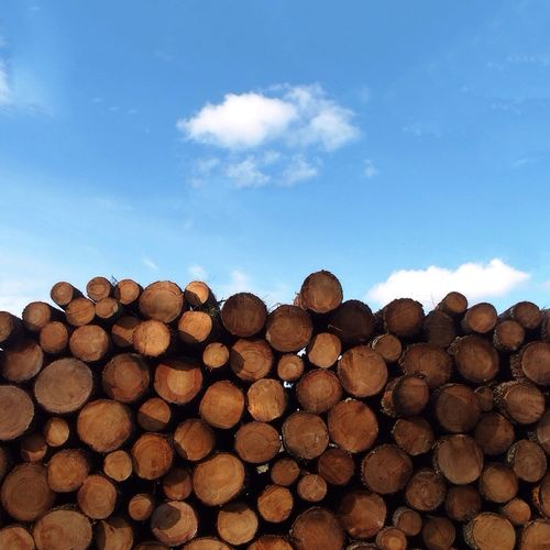 Stacks Of Logs Against Sky