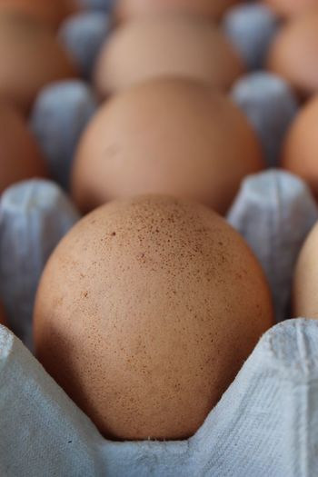 Farm Abundance Animal Egg Brown Close-up Egg Farmer's Market Food Food And Drink Fragility Fresh Eggs Freshness Full Frame Group Of Objects Healthy Healthy Eating Healthy Food Healthy Lifestyle In A Row Large Group Of Objects No People Raw Food Selective Focus Still Life Wellbeing