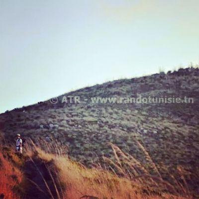 île De La Galite Galite Island Tunisia Hanging Out Hiking