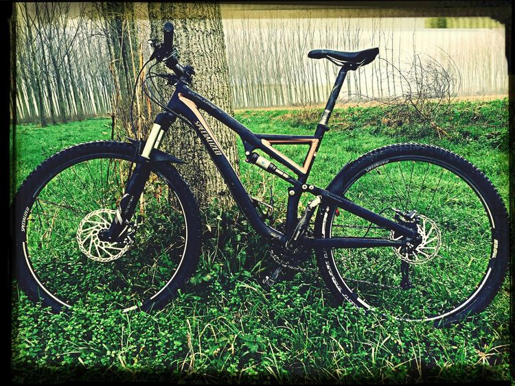Welcome baby MTB Stumpjumper Specialized