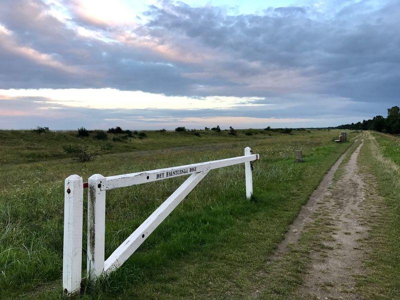 Cloud - Sky Grass Outdoors Landscape No People Sky Denmark Embankment Baltic Sea Coastline Nature Marielyst