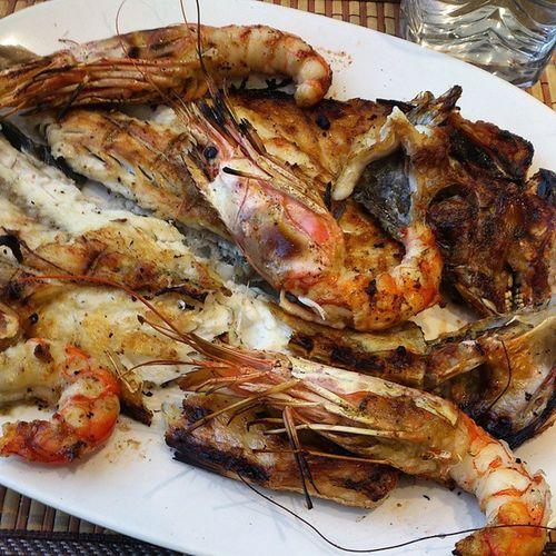 قمبري وراته قروص طرابلس ليبيا حوت Fish Tripoli Libya