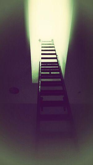 Taking Photos Ladder