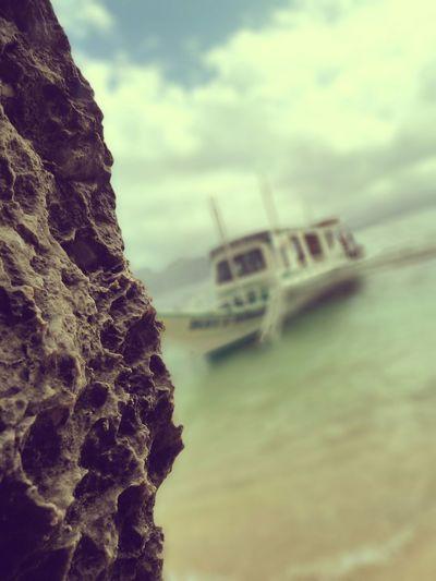 Palawan Philippines Boat Rock Coral