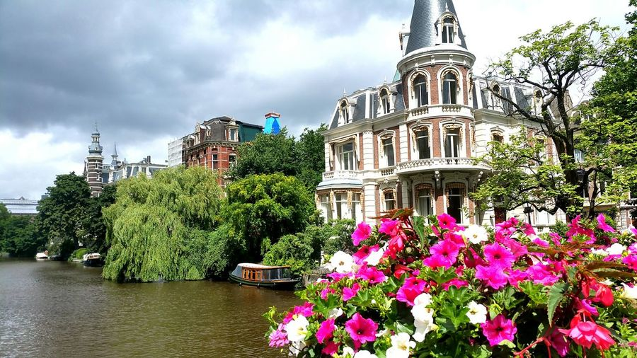 Amsterdam Travel Destinations Cityscape Travel Flower City No People Tree GetbetterwithAlex Architecture Cloud - Sky Nature Sky Outdoors Day Amsterdam City Life Cityscape Peniche Amsterdam Life Netherlands Amsterdam City Amsterdam Canal City Street City View  Skyporn