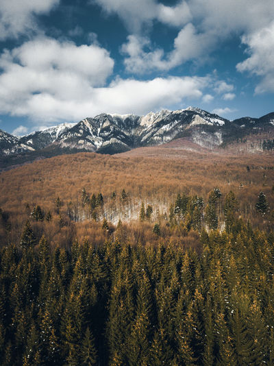 Drone  Nature Pine Sky And Clouds Aerial View Beauty In Nature Blue Sky Cloud - Sky Cold Temperature Day Landscape Mountain Mountain Range Mountains Nature Nature_collection No People Outdoors Range Scenery Scenics Sky Snow Tranquility Winter