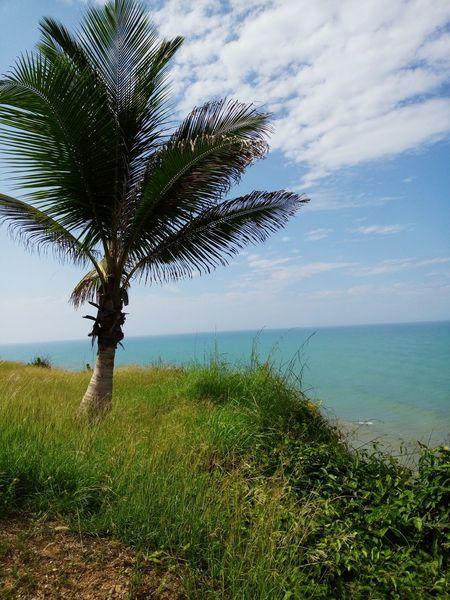Beach Photography Guajira, Colombia Meizu Mx5 Relax Time  Enjoying Life Photography