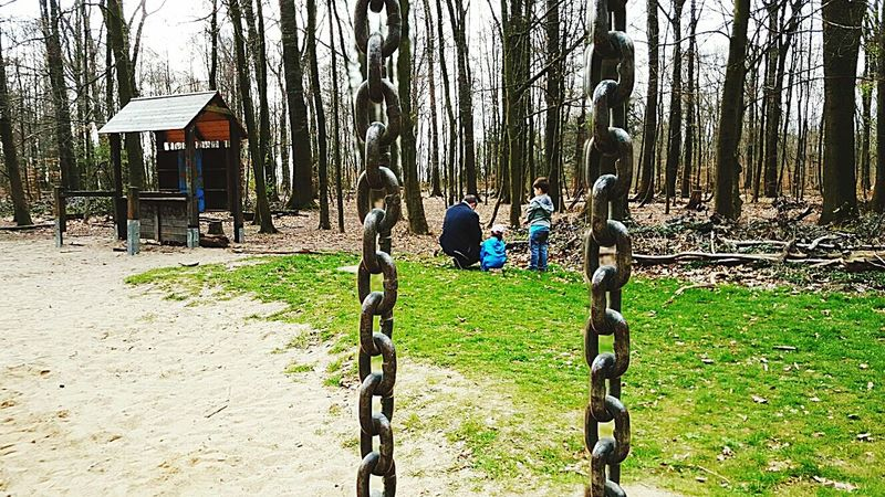 My Family My Son My Daughter My Darlings Wood Sunny Day Meine Familie Waldspaziergang Chains Perspective Прогулка в парке Моя семья Woods Forest Haus Im Wald Walking Around Spring