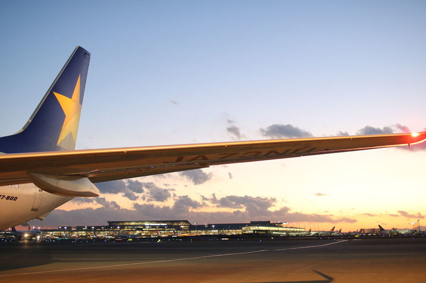 Airport Haneda Airport Skymark Airlines Airliner Sunset Travel Airplane Wing