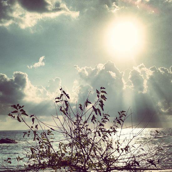 Turkey Beach Sea And Sky Sea