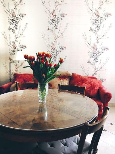 Feeling spring Spring Flowers Springtime Plant Vase Flowering Plant Table Flower Indoors  No People Nature Freshness Red Home Interior Decoration Flower Head Flower Arrangement