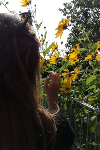 F L O W E R S Flower Yellow Flowers Photography Girl Me Young Women Women Sky Close-up Blooming