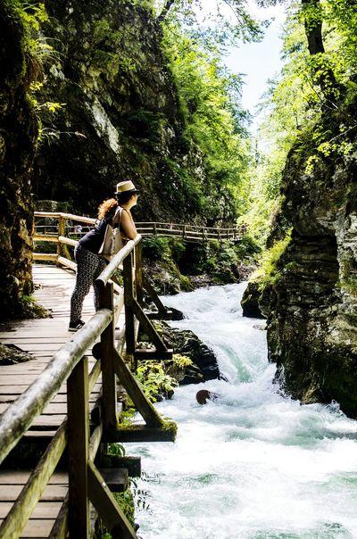 Happiness ♡ Holiday Memories Slovenia Friendship Nature Water Green Nature