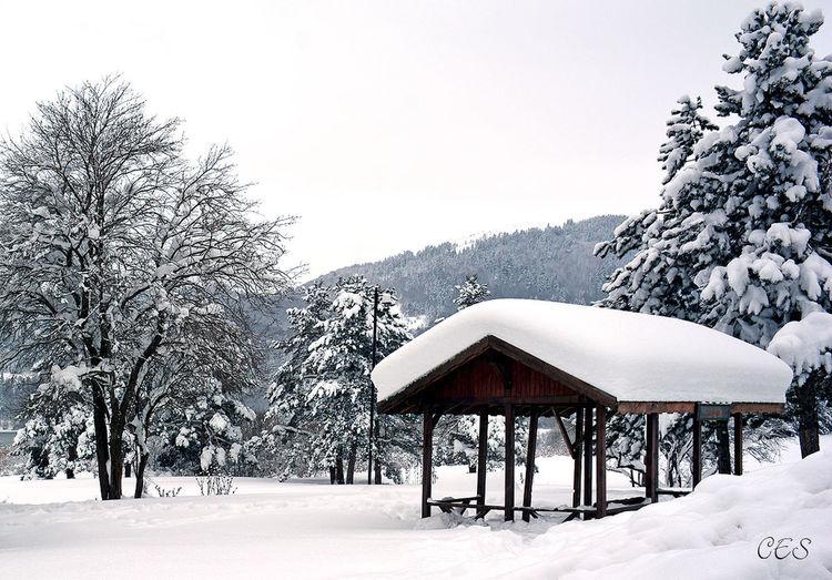 Abant Gölü Abant Abantgölü Bolu  Kar