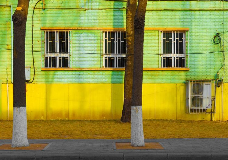 Beauty in Simplicity Architecture Building Exterior Built Structure Day Green Color Illuminated Multi Colored No People Outdoors Shutter Window Yellow