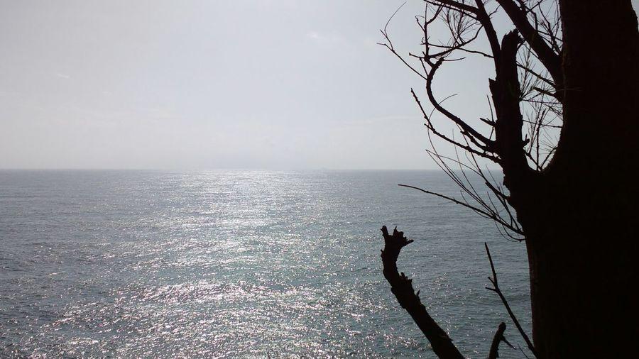 Original Seascape Sea And Sky Nofilters Goa India Goadiaries Horizon Over Sea