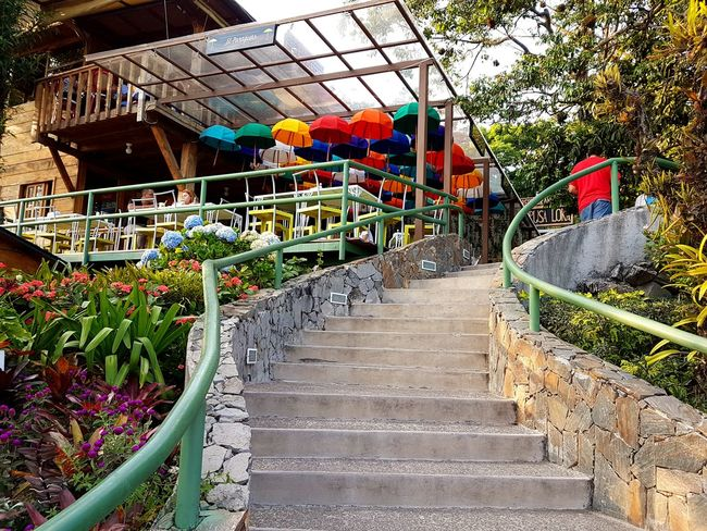 Volcán de San Salvador, Plaza Volcán Architecture Built Structure Day Growth Multi Colored No People Outdoors Railing Staircase Steps Steps And Staircases Umbrellas