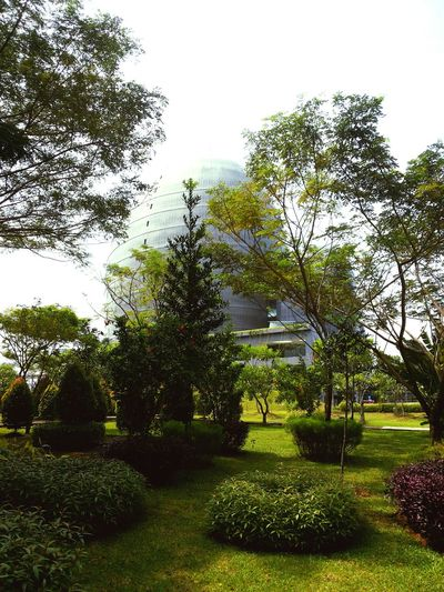 Exterior Architecture Green House Landscape_photography Fasade INDONESIA