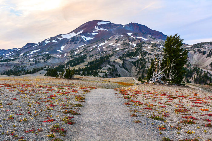 Approaching South Sister on a hike in Oregon's Three Sisters Wilderness. Cascade Mountains Hiking Oregon Pacific Northwest  Beauty In Nature Cascades Day Landscape Mountain Mountain Range National Forest Nature No People Outdoors Public Land Scenics Sky Snow South Sister The Way Forward Trail Tranquil Scene Tranquility Volcano Wilderness