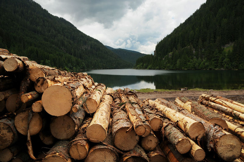 Stack Of Logs By Lake Against Cloudy Sky