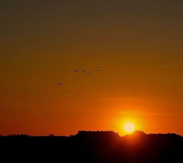 Beautiful Sunset Yesterday!